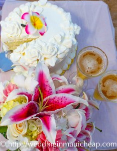 Cake & Cider Served on Beach ~ $130